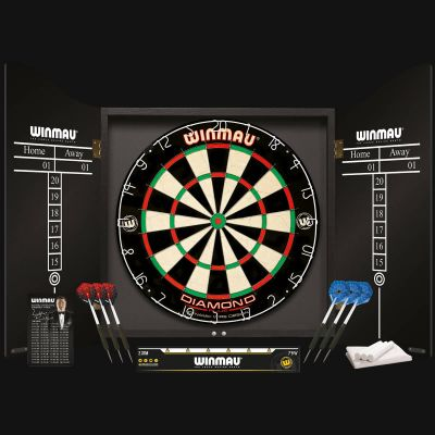 Professional Darts Set
